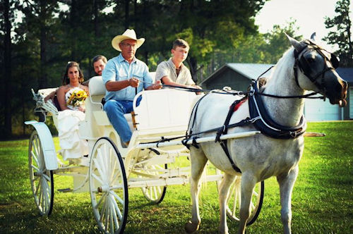 Carriage for hire
