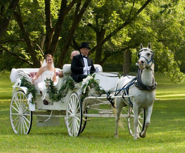 wedding Article Image004